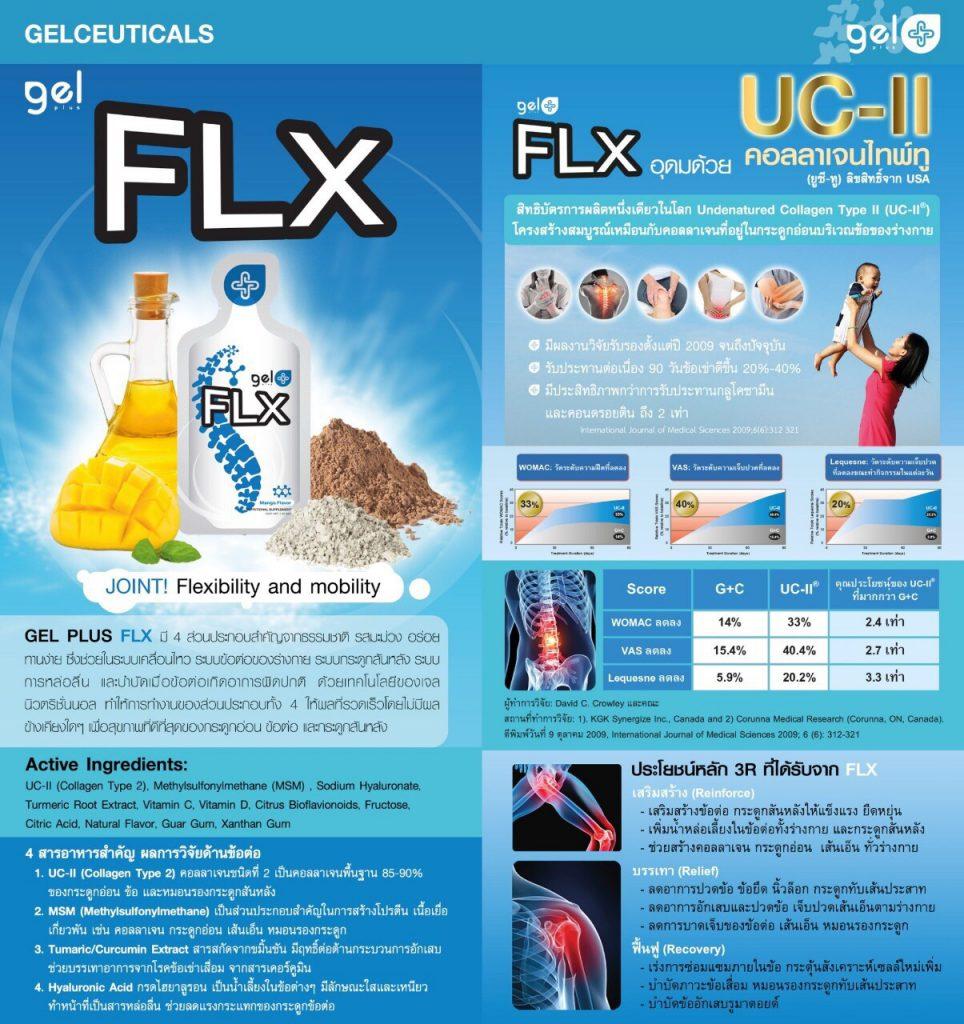 FLX-หมอนรองกระดูกทับเส้นประสาท-1-hrtexo.com